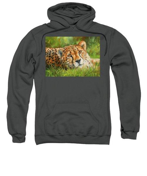 Cheetah Sweatshirt by David Stribbling