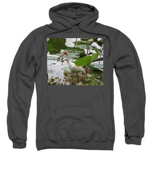 American White Ibis In Brazos Bend Sweatshirt by Dan Sproul