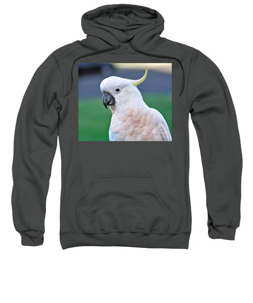 Australian Birds - Cockatoo Sweatshirt by Kaye Menner