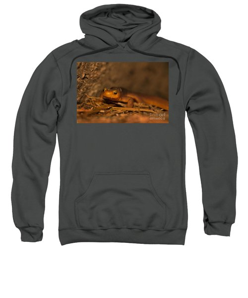 California Newt Sweatshirt by Ron Sanford