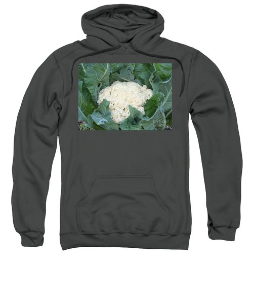 Cauliflower Sweatshirt by Carol Groenen