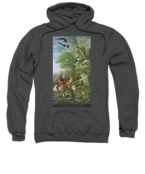 Cock Pheasant Hen Pheasant And Chicks And Other Birds In A Classical Landscape Sweatshirt by Pieter Casteels