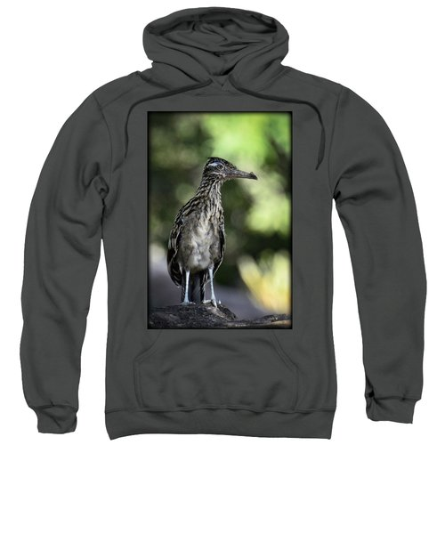 Greater Roadrunner  Sweatshirt by Saija  Lehtonen