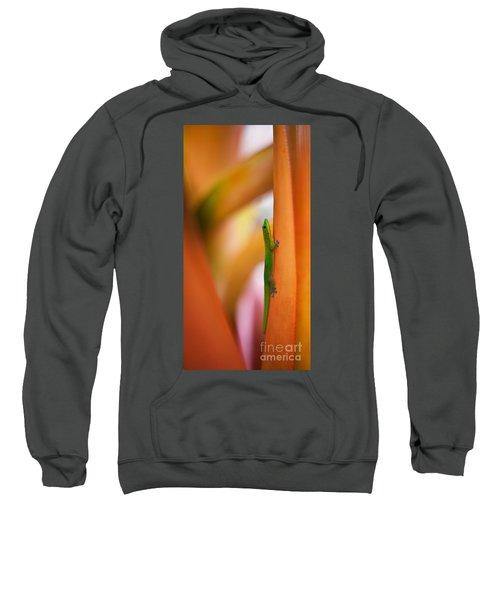 Island Friend Sweatshirt by Mike Reid