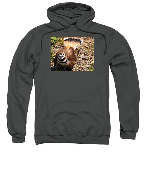 Killdeer On Its Nest Sweatshirt by Chris Flees