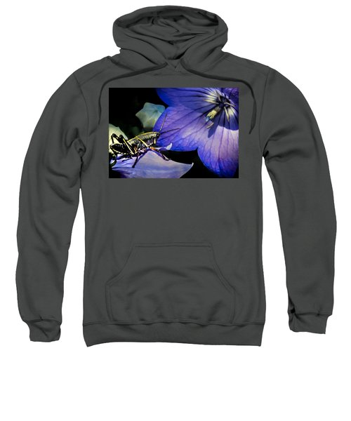 Contemplation Of A Pistil Sweatshirt by Karen Wiles
