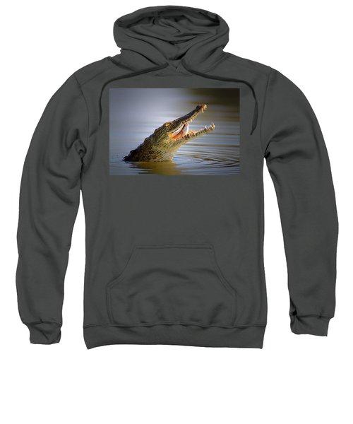 Nile Crocodile Swollowing Fish Sweatshirt by Johan Swanepoel