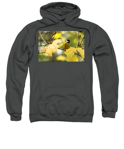 Sensibly Dressed - Featured 3 Sweatshirt by Alexander Senin
