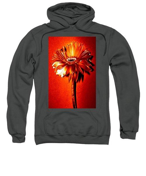 Tequila Sunrise Zinnia Sweatshirt by Sherry Allen