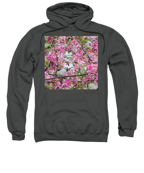 Tufted Titmouse In A Pear Tree Square Sweatshirt by Bill Wakeley