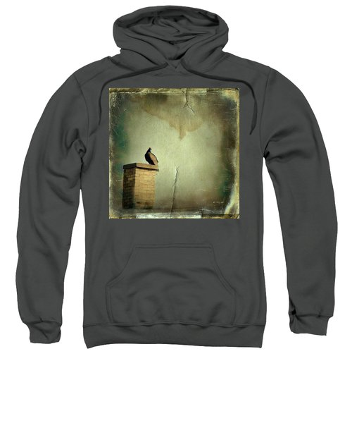 Turkey Vulture Sweatshirt by Gothicrow Images