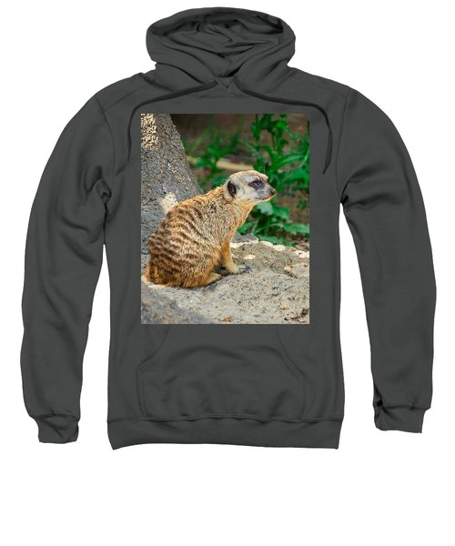 Watchful Meerkat Vertical Sweatshirt by Jon Woodhams