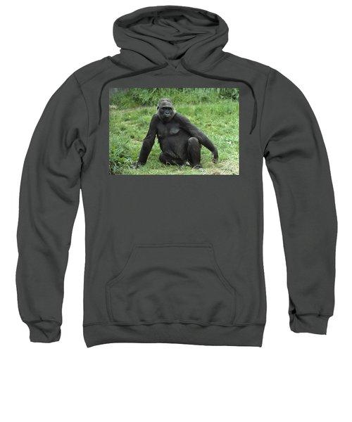 Western Lowland Gorilla Female Sweatshirt by Gerry Ellis