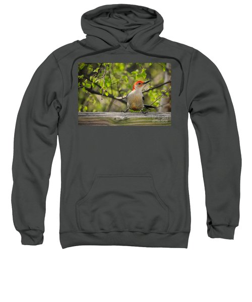 Which Way Did They Go Sweatshirt by Lois Bryan