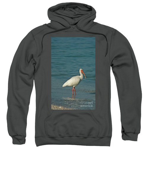 White Ibis Sweatshirt by Cindi Ressler