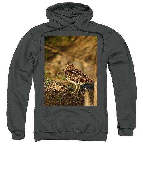 Wilson's Snipe Sweatshirt by James Peterson