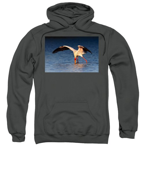 Yellow-billed Stork Hunting For Food Sweatshirt by Johan Swanepoel