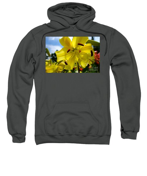 Yellow Whopper Lily 2 Sweatshirt by Jacqueline Athmann