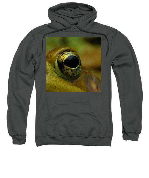 Eye Of Frog Sweatshirt by Paul Ward