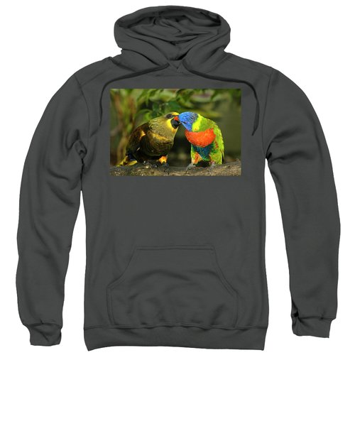 Kissing Birds Sweatshirt by Carolyn Marshall
