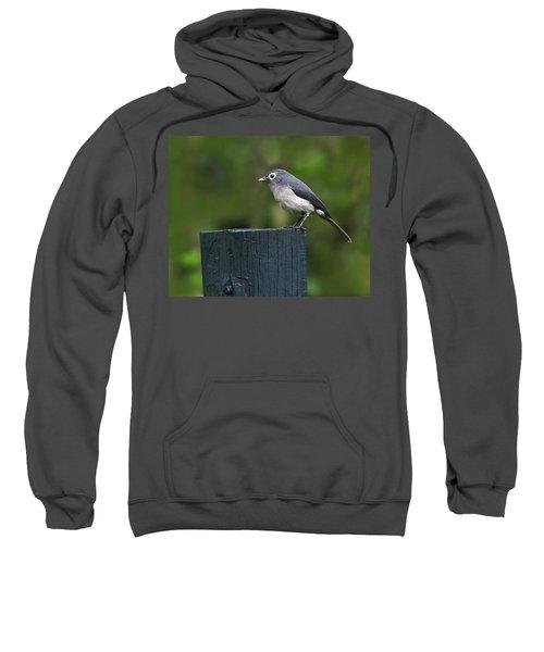 White-eyed Slaty Flycatcher Sweatshirt by Tony Beck