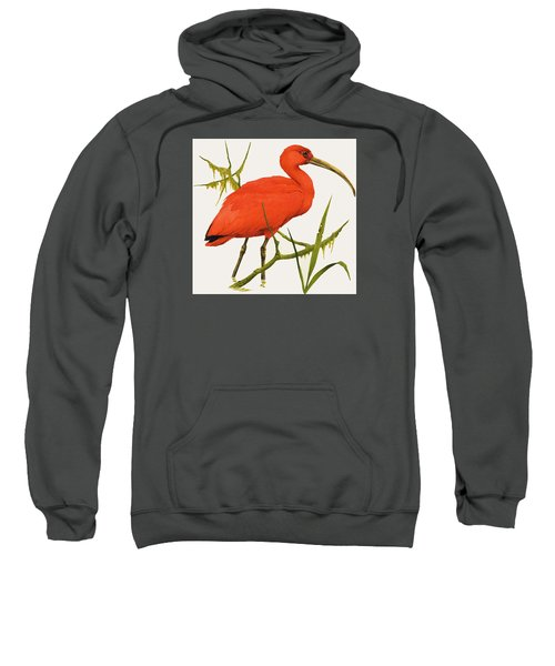 A Scarlet Ibis From South America Sweatshirt by Kenneth Lilly