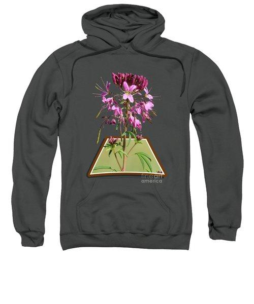 Rocky Mountain Bee Plant Sweatshirt by Shane Bechler