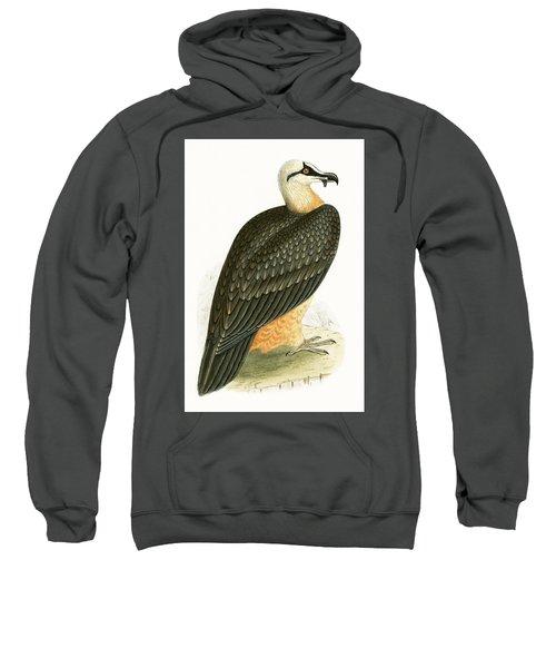 Bearded Vulture Sweatshirt by English School