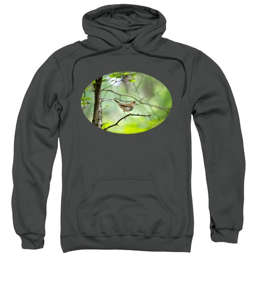 Beauty Of The Spring Forest Sweatshirt by Christina Rollo