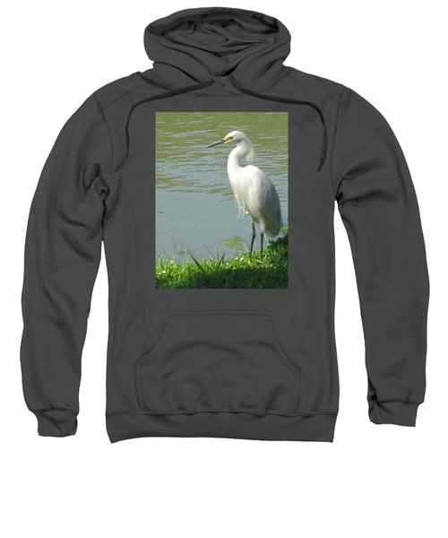 Bird Sweatshirt by Sandy Taylor