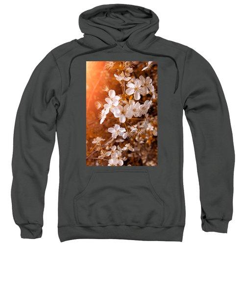 Blossoming Garden Sweatshirt by Konstantin Sevostyanov