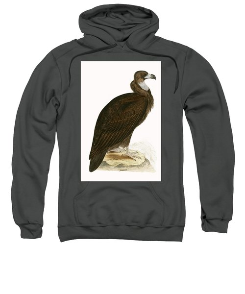 Cinereous Vulture Sweatshirt by English School