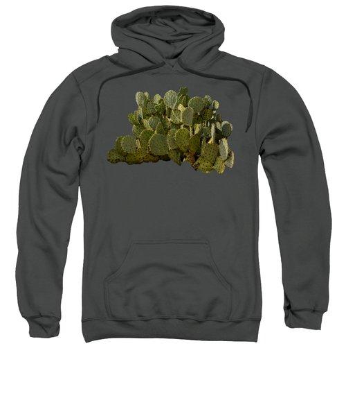 Desert Prickly-pear No6 Sweatshirt by Mark Myhaver