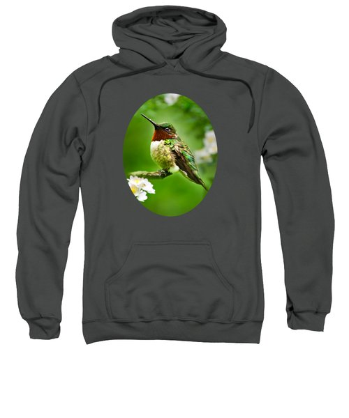 Fauna And Flora - Hummingbird With Flowers Sweatshirt by Christina Rollo