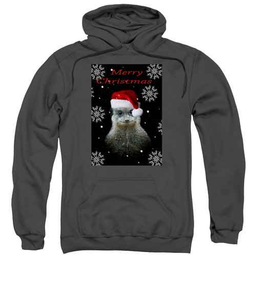 Happy Christmas Sweatshirt by Paul Neville