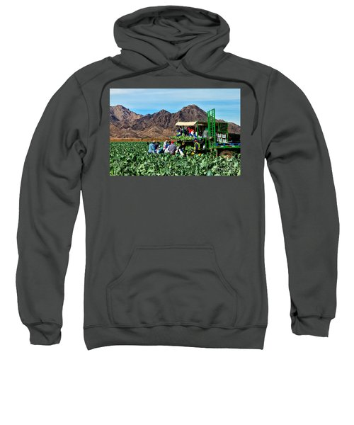 Harvesting Broccoli Sweatshirt by Robert Bales