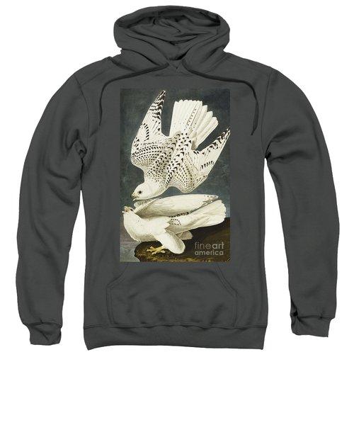 Iceland Or Jer Falcon Sweatshirt by John James Audubon