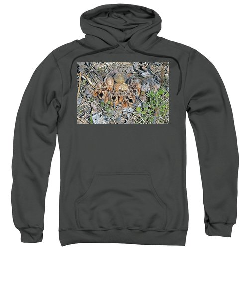 Just Hatched American Woodcock Chicks Sweatshirt by Asbed Iskedjian