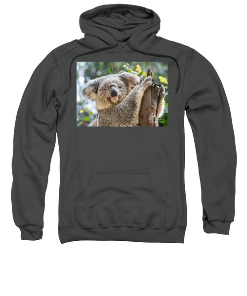 Koala On Tree Sweatshirt by Jamie Pham
