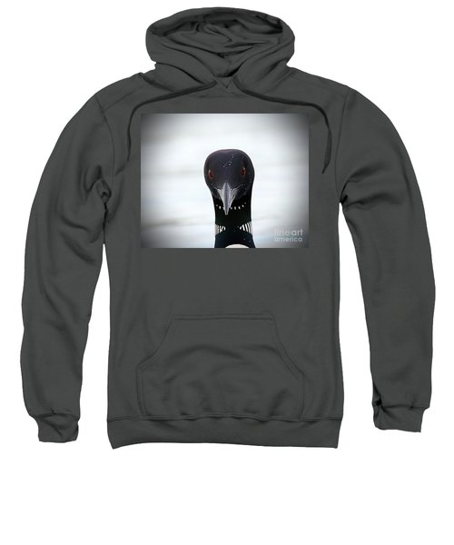 Loon Stare Sweatshirt by Peter Gray