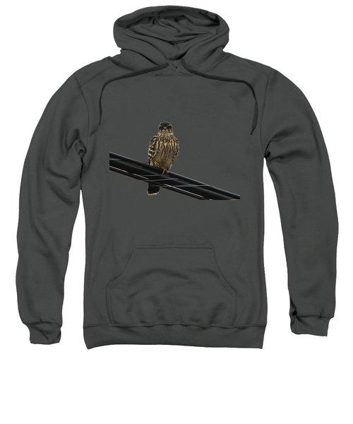 Magical Merlin Sweatshirt by Debbie Oppermann