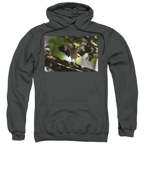 Mockingbird  Sweatshirt by Terry DeLuco