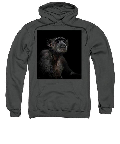 Noble Sweatshirt by Paul Neville