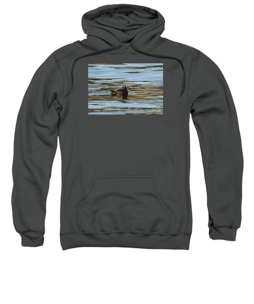 Puffin Reflected Sweatshirt by Mike Dawson