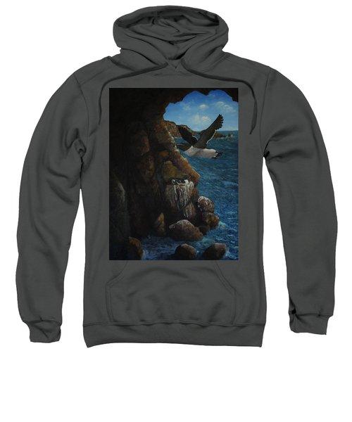 Razorbills Sweatshirt by Eric Petrie