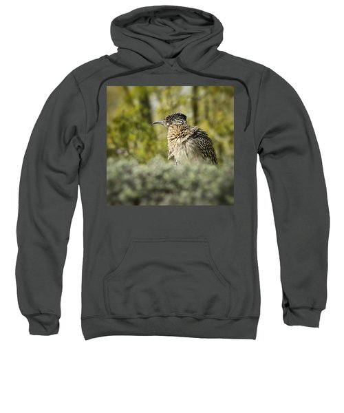 Roadrunner On Guard  Sweatshirt by Saija  Lehtonen