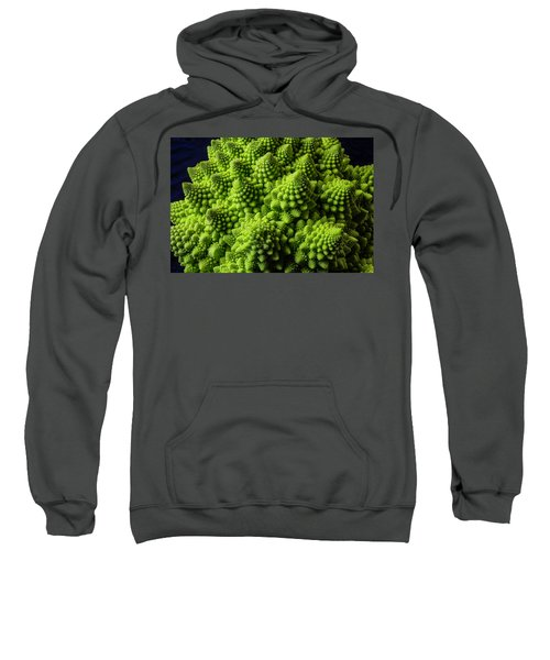 Romanesco Broccoli Sweatshirt by Garry Gay