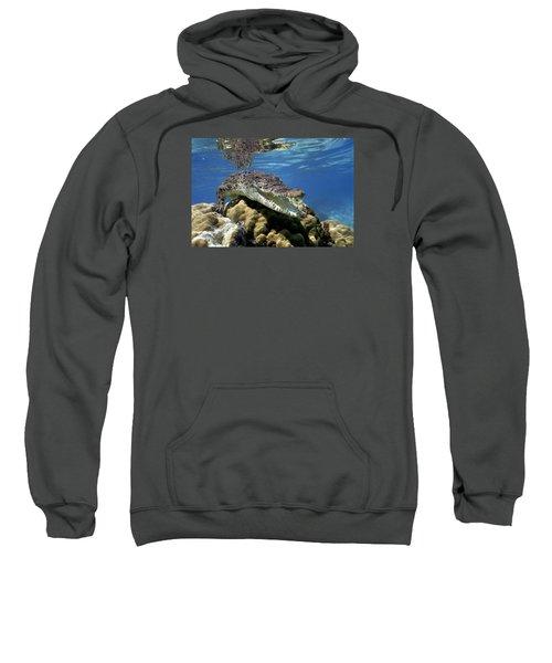 Saltwater Crocodile Smile Sweatshirt by Mike Parry