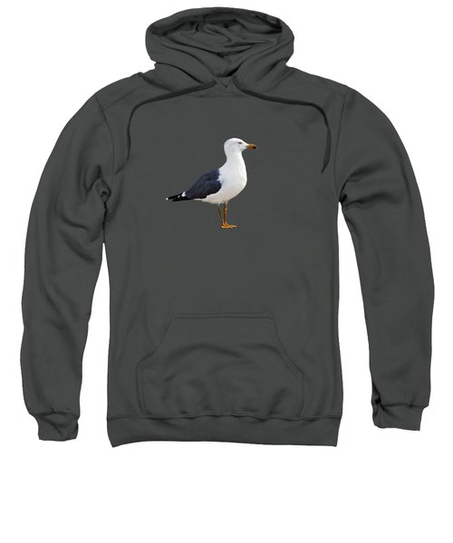 Seagull Portrait Sweatshirt by Sue Melvin