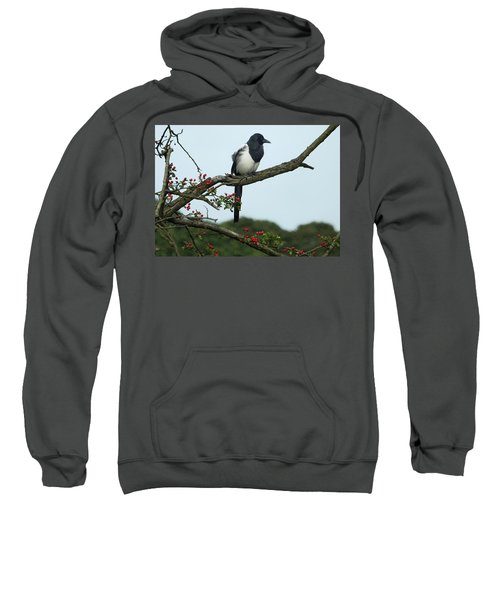 September Magpie Sweatshirt by Philip Openshaw